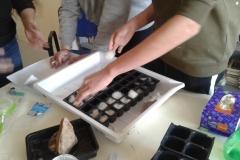 2bprogetto TERRA coltivare-in-lana-idroponica